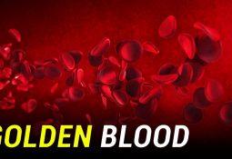 Dünyanın En Nadir Kan Grubu: RHNull